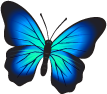 footer butterfly